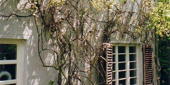 Detailansicht Süd